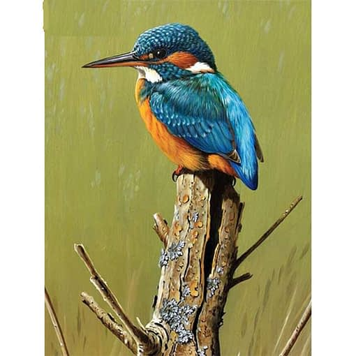 5D Diamond Painting Kingfisher